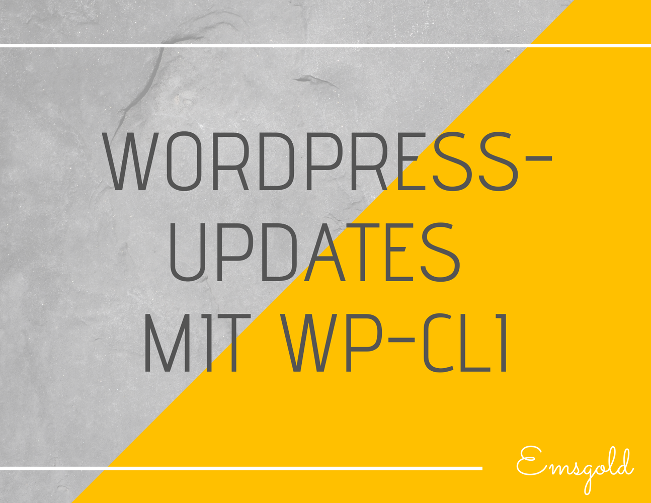 Wordpress-Updates mit WP-CLI